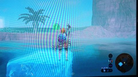 BOTW Glitch 2 - Walking Underwater