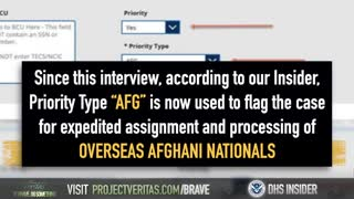 Second DHS Whistleblower, Project Veritas