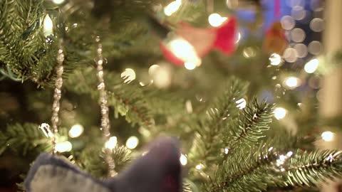 The snowmic Christmas tree 2021