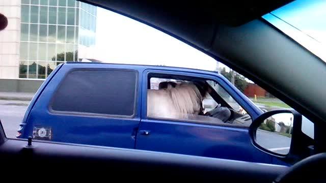 Bilisten har fått seg en ny kartleser