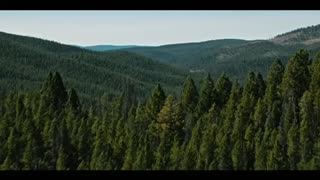 Yellowstone Trailer Season 4
