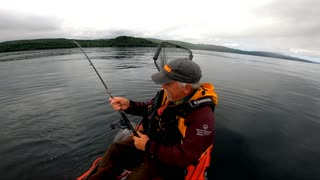 Pacific Halibut from a Kayak