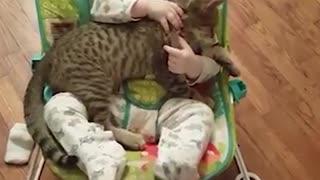 Kitten and Baby loving