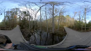 Swamp Bridge 360