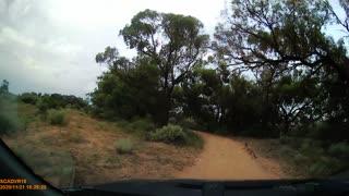 Crossing Kangaroo Clips Windshield