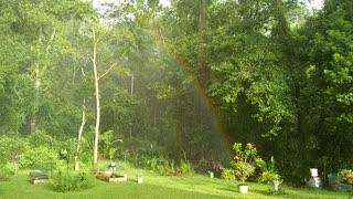 Rainbow sun shower
