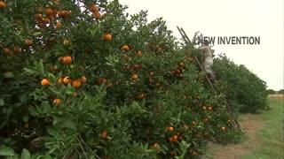 Amazing Agriculture Harvesting Machine - Latest Farming Technology