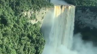 Nature , Amazon rainforest