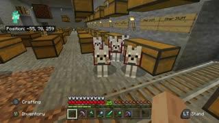 My MEGA Minecraft survival world