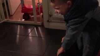 Baby finds dog's sneezing fit super funny