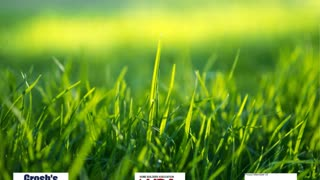Commercial Lawn Mowing Service Williamsport MD