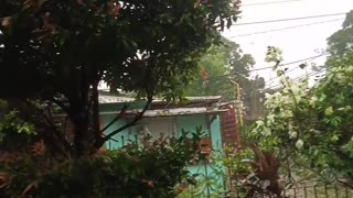 TYPHOON ROLLY HITS IN THE PHILIPPINES