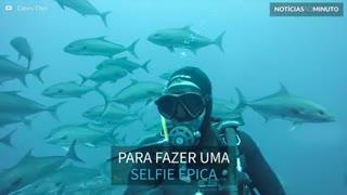 Mergulhador faz selfie em meio a cardume de peixes