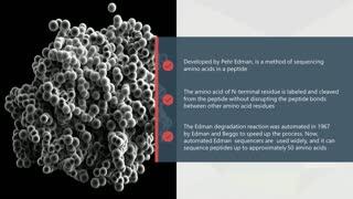 Protein Sequencing - Edman Degradation
