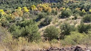 Mountain View in Arizona