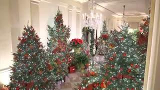 A White House Christmas !