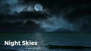 Lavender Lass Books Night Skies: A WWII Short Story