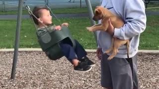 babies vs dogs epic battle
