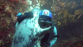 Christmas Special Dive - Part 1