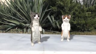 cats dancing on music