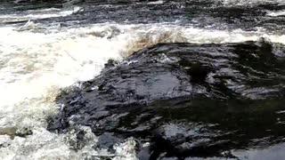 video river flowing through rapids