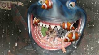 Son meets Shark !