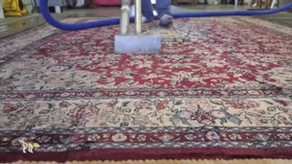 PetPeePee Company   It's A genius cleaning process - Oriental rug cleaning