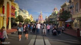What Disney Can Teach Us About Covid-19 Lockdowns Fail
