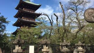 Old Shrine in China