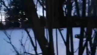 A secret window watcher...