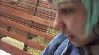 goat dereza eating