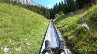 Speeding Through a Beautiful Mountain Coaster in Switzerland