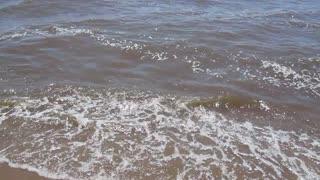 The sea nature, the sea sounds
