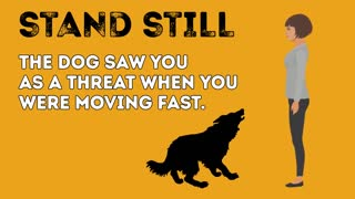 How to survive dog attacks
