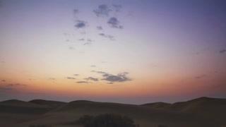 ALI ~ Duke of the Desolate Desert