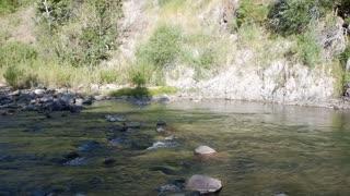East Carson River