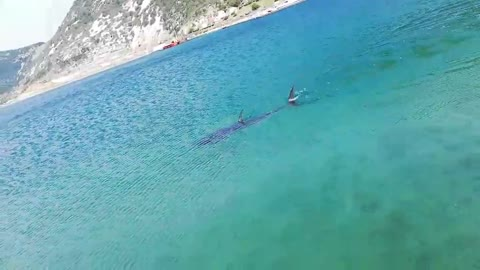 """Pogledajte što su ljudi snimili u Jadranu: """"Kupanje je završeno"""""""