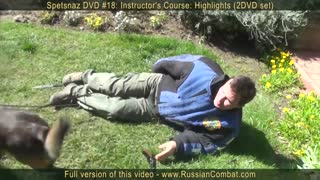 Learn how to defend yourself from DOG attack
