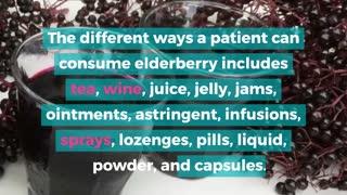 The Surprising Health Benefits Of Elderberry