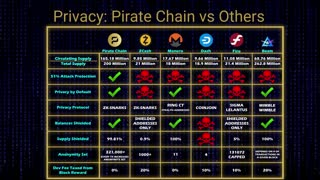 Everything You Need To Know About Pirate Chain (ARRR)