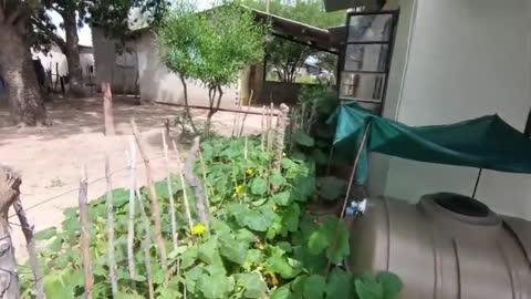 Tsumkwe Home 2.0