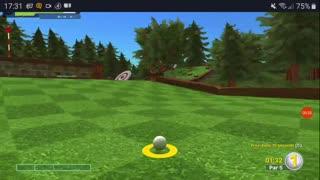 afternoon golfing fun