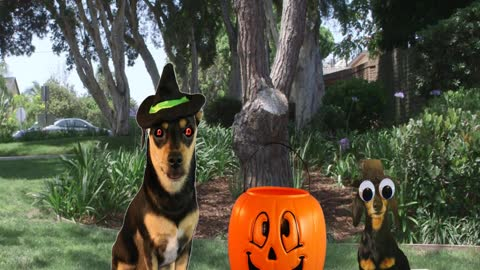 Pixeladog & Halloween