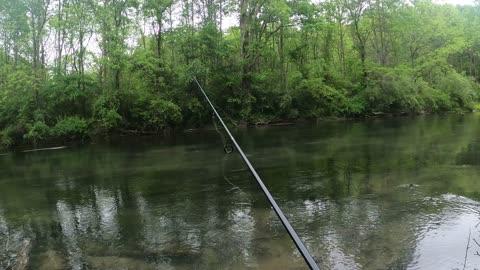 Wet & Wild Trout Fishing part 1