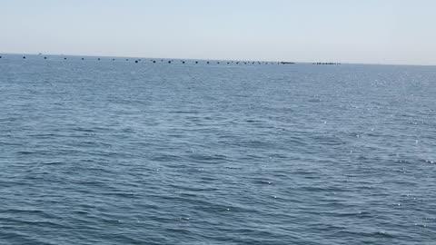 Black sea Odessa