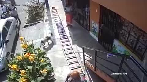 Angry Wheelchair Guy