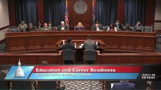 Michigan Senator Dayna Polehanki Lies in front of Senate Committee