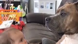 FUNNIEST and CUTEST moments!
