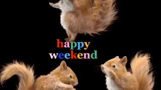 Happy happy weekend