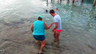 Bahamas shark attack